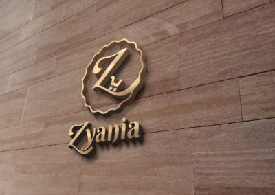 Zyania 3D Logo by stamsgroup