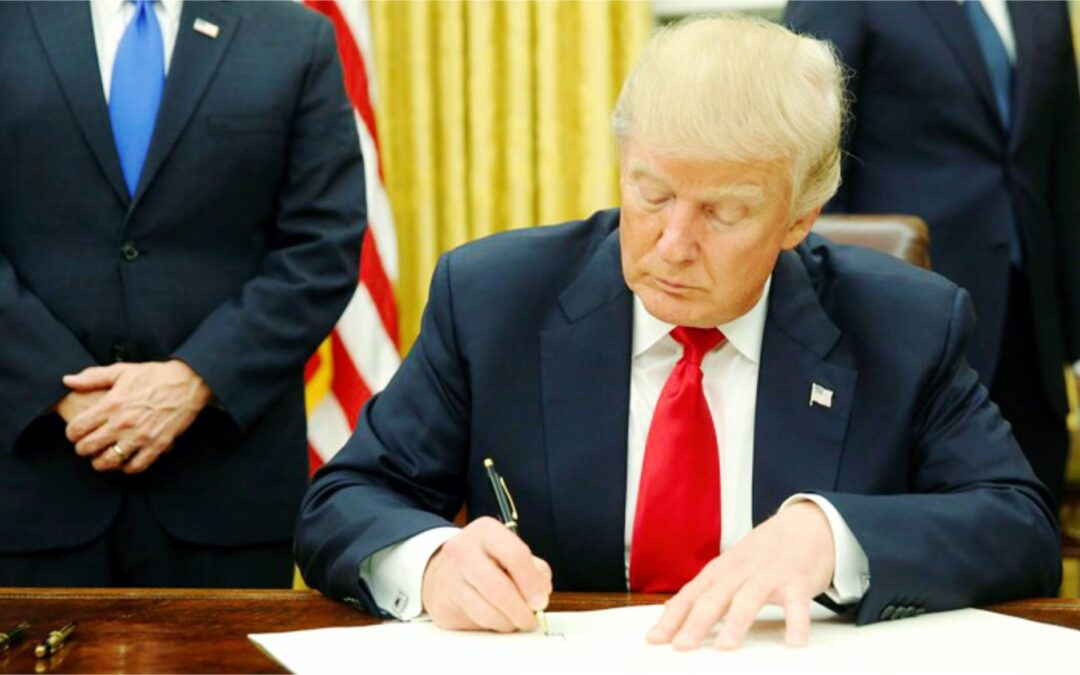 Employ Skills not degree – Trump signs order in government hiring